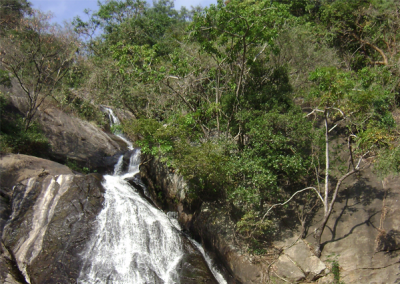 Monkey-Falls
